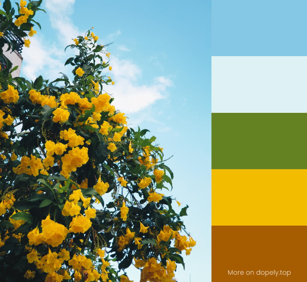 yellow flowers and blue sky and color palette by dopely.top