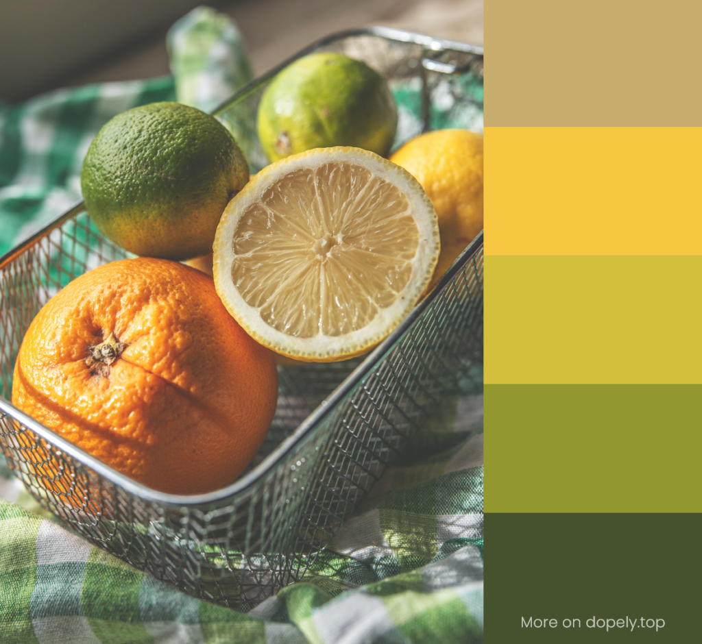 Citrus in a basket and color palette by dopely.top
