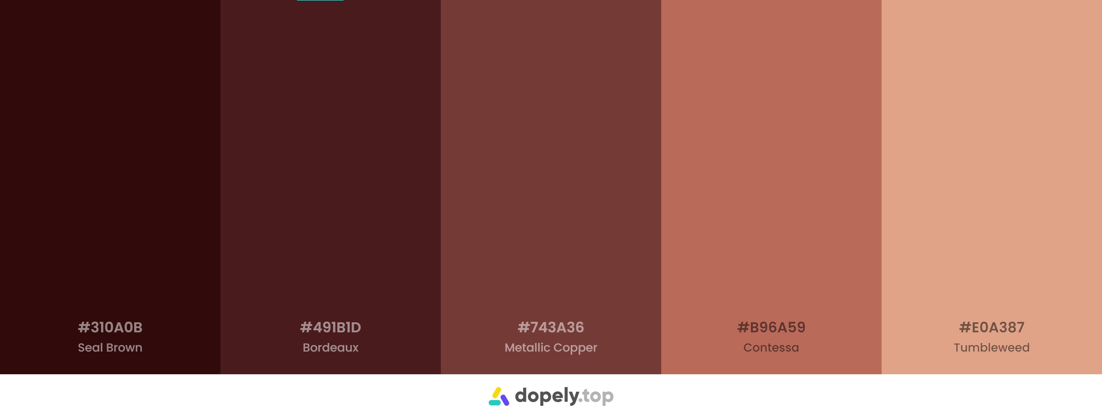 beautiful analogous brown color palette