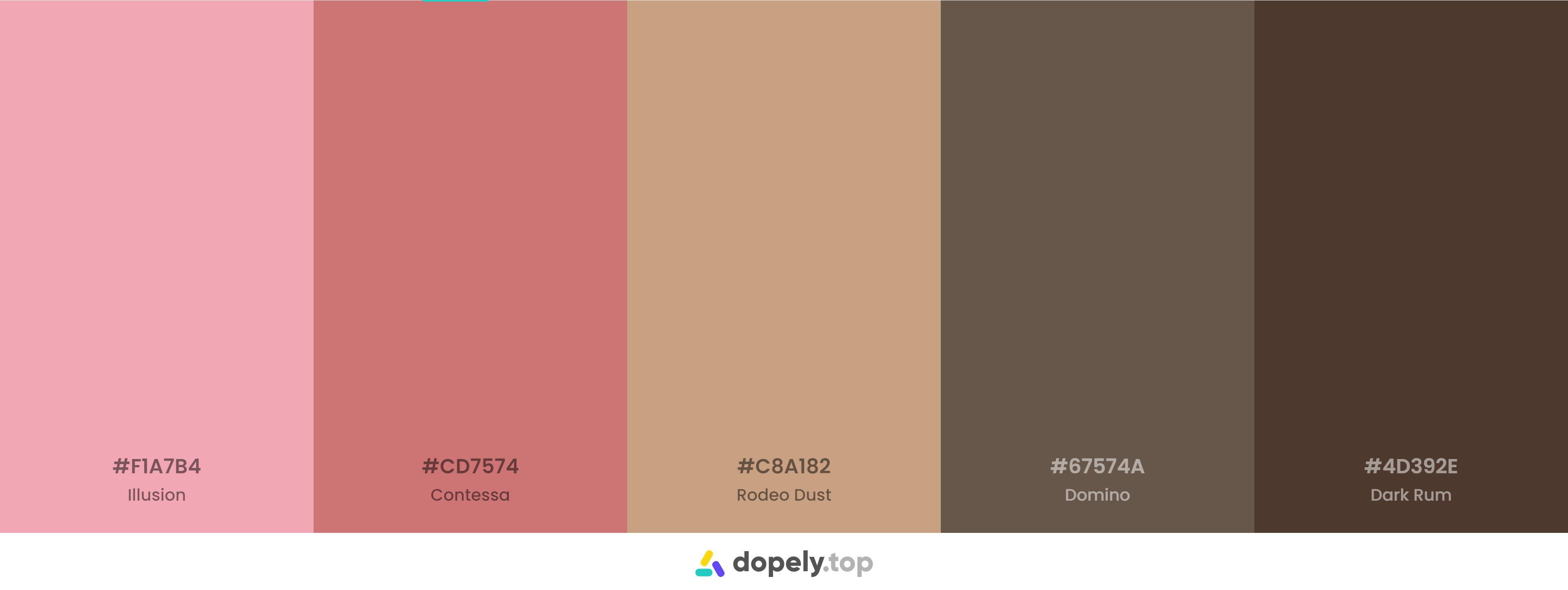 pink and Brown Color Palette Inspirations with Names & hex Codes