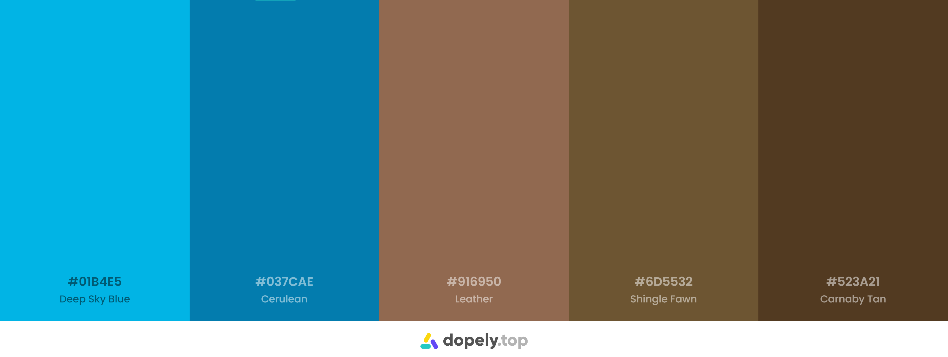 Blue and Brown Color Palette Inspirations with Names & hex Codes