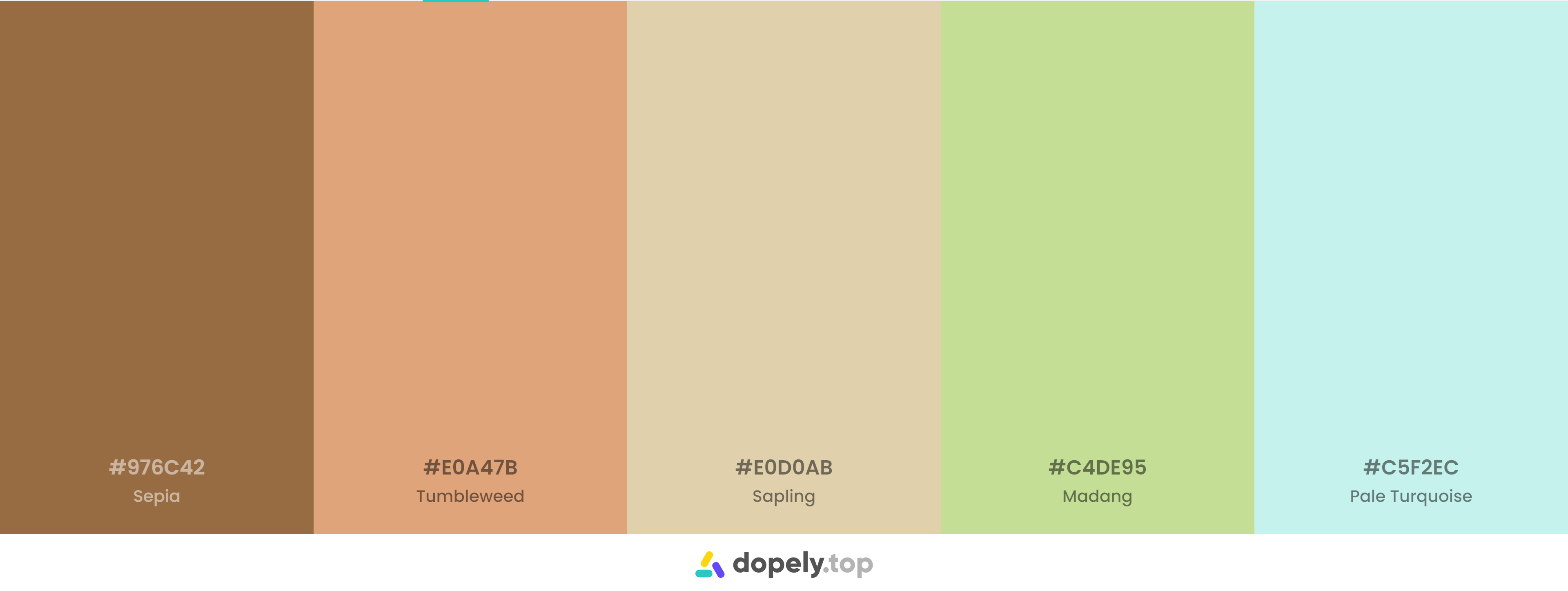 Brown Color Palette Inspirations with Names & hex Codes
