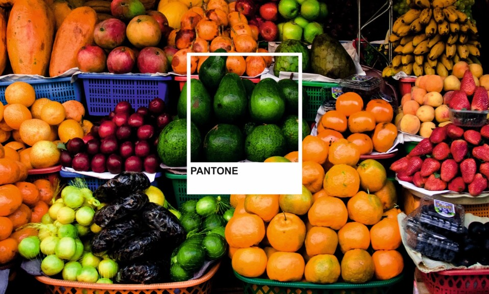 pantone marked by avocado color in the fruit shop