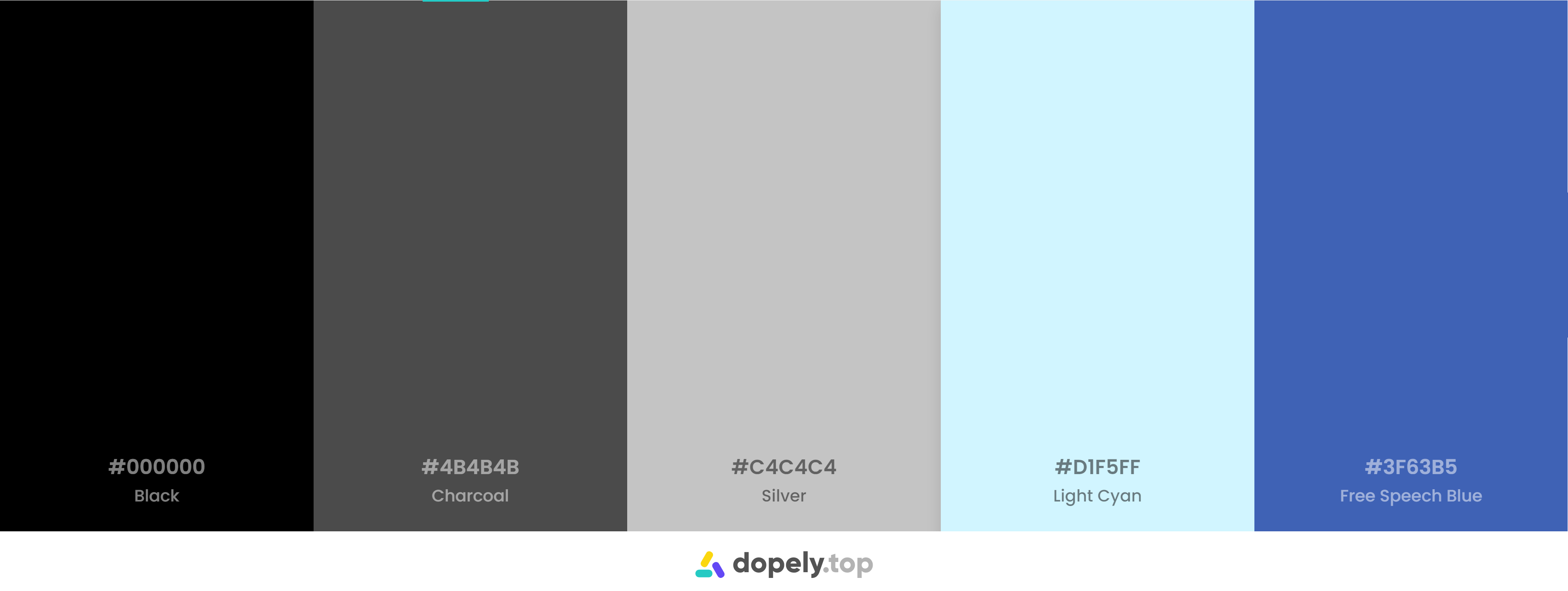 Black and blue Color Palette Inspirations with Names & hex Codes
