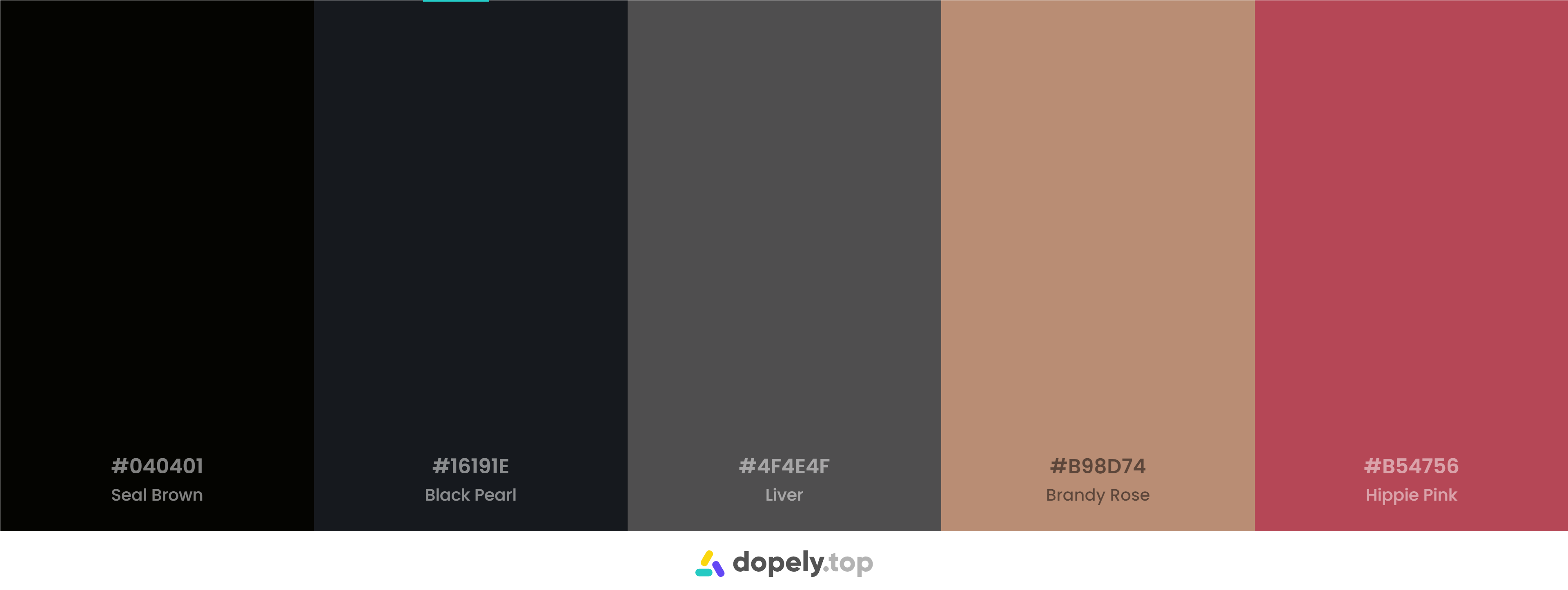 Black Color Palette Inspirations with Names & hex Codes