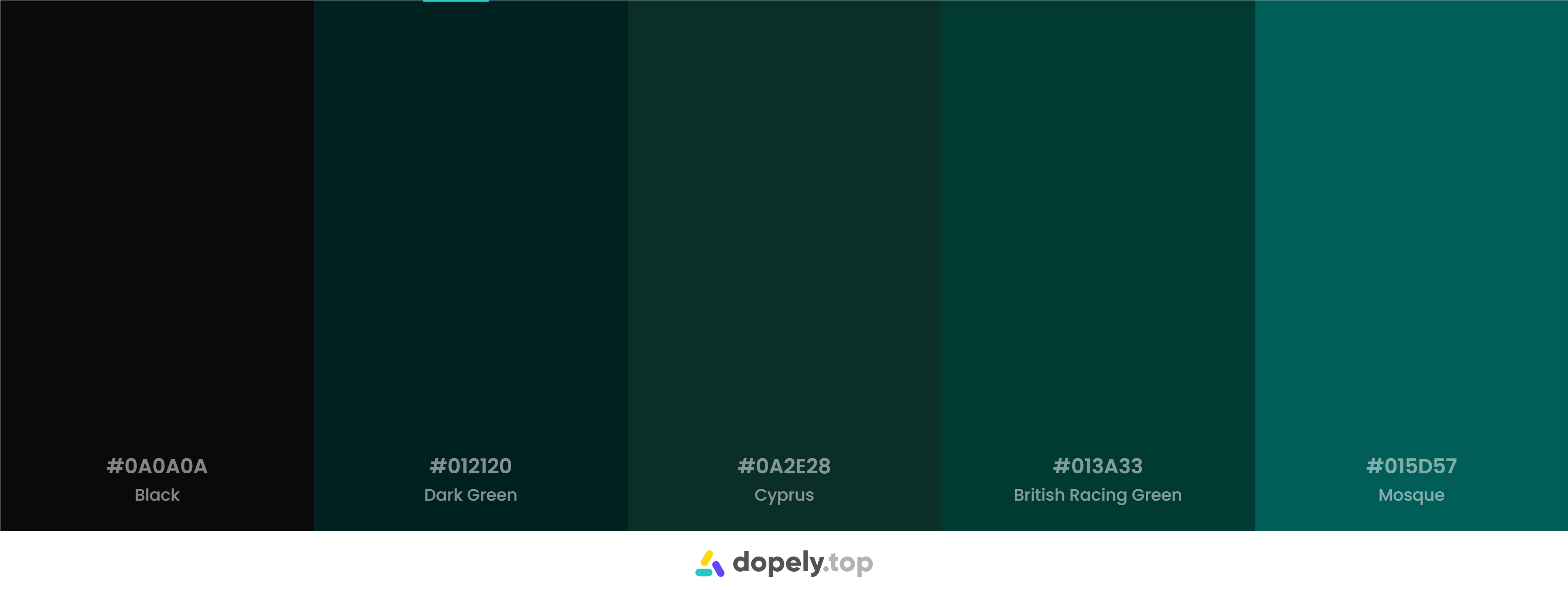 Dark green Color Palette Inspirations with Names & hex Codes