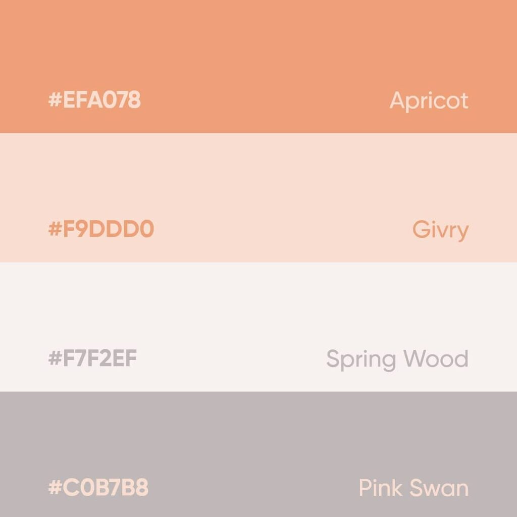 palette inspiration 35
