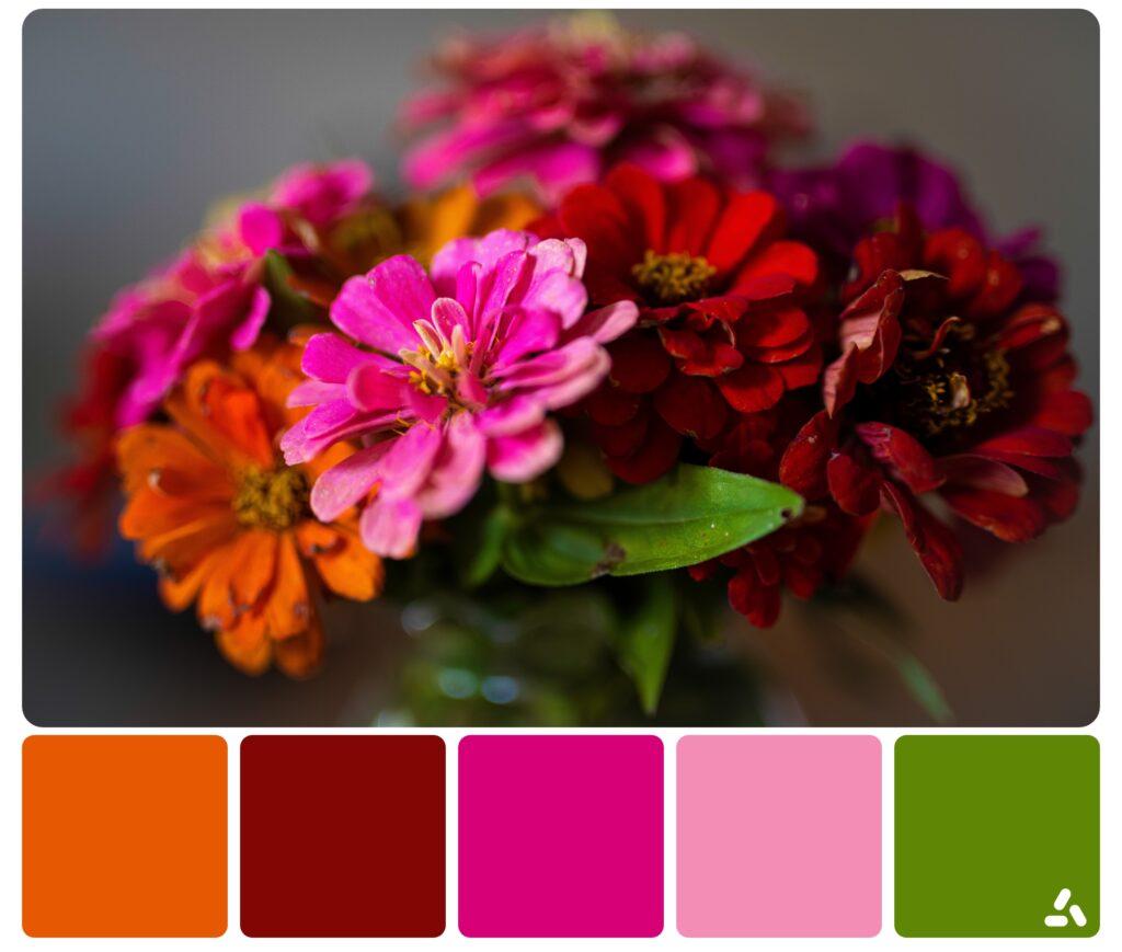 palette inspiration11
