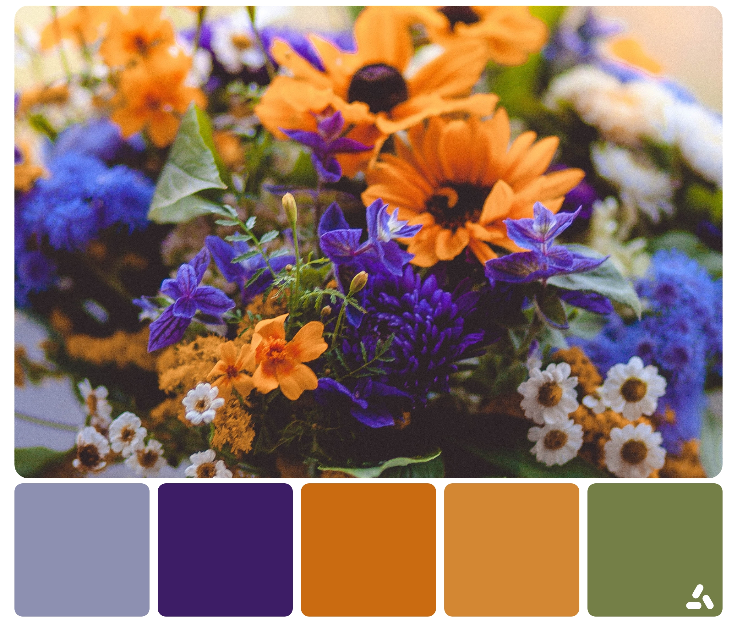palette of colorful flowers