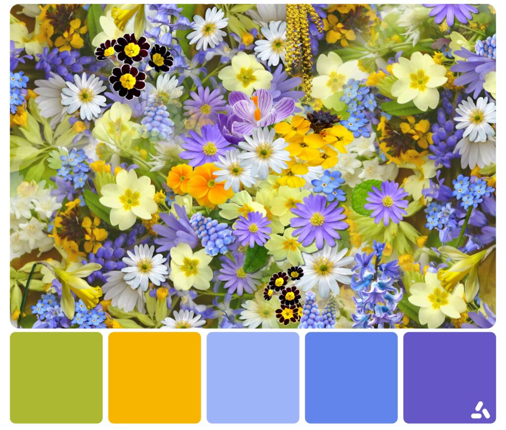 palette inspiration3