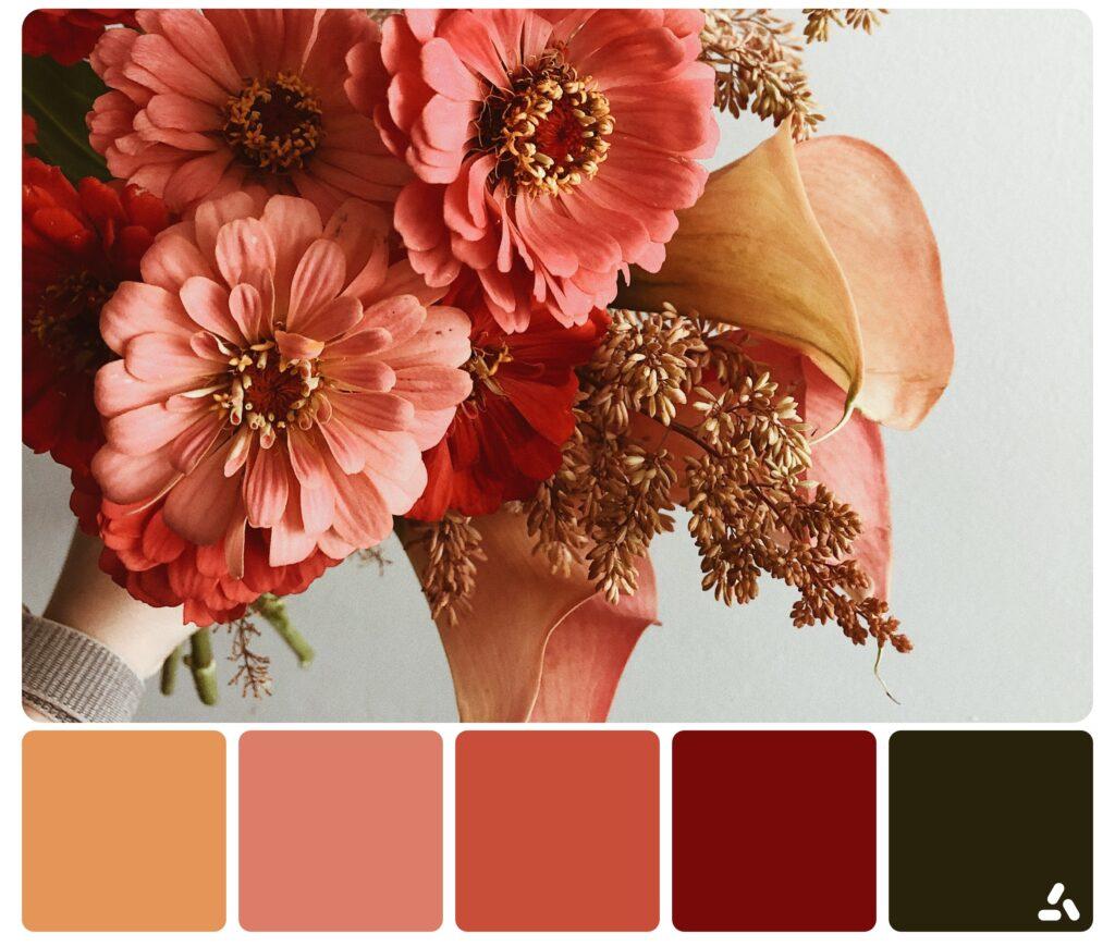 palette inspiration8