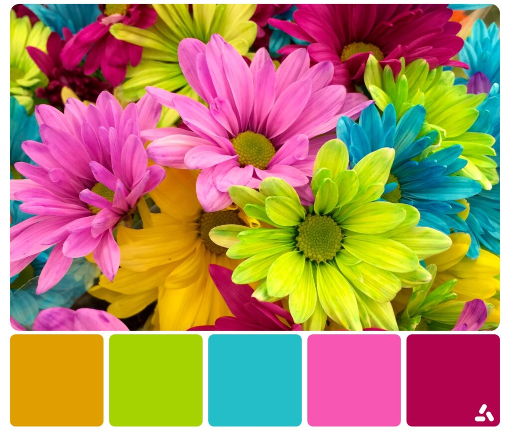 palette inspiration2