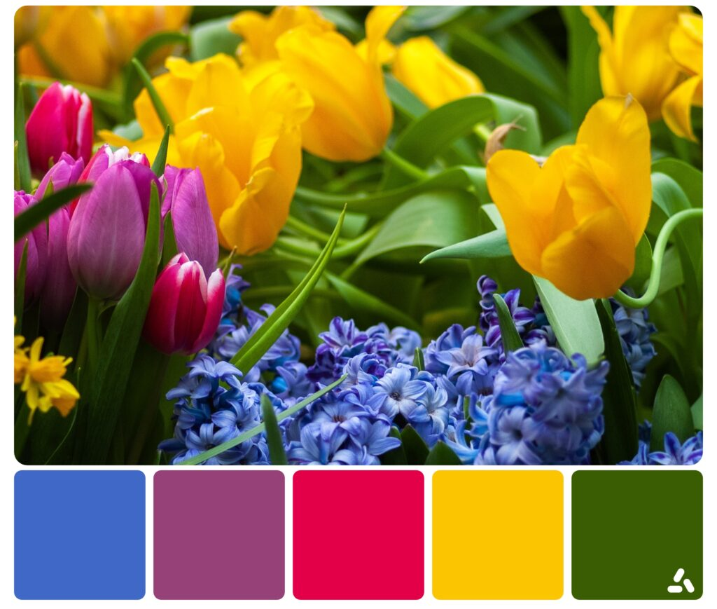 palette inspiration by nature
