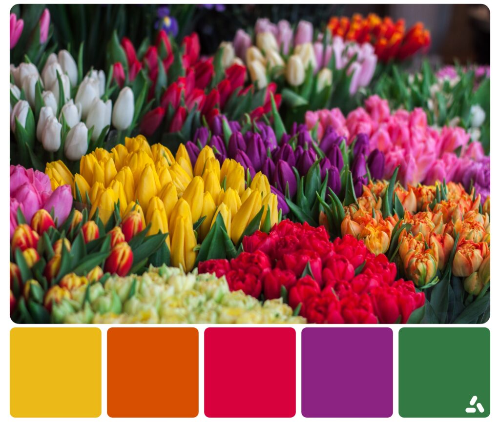 palette inspiration by colorful flowers