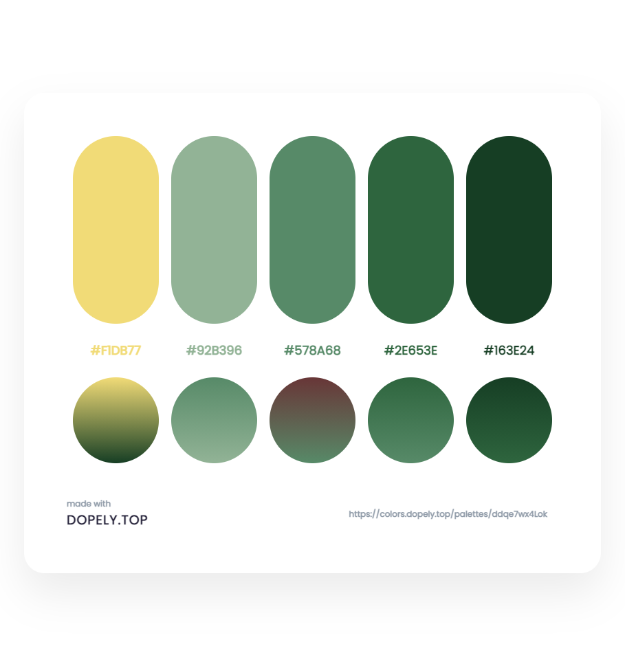 color palette inspiration7