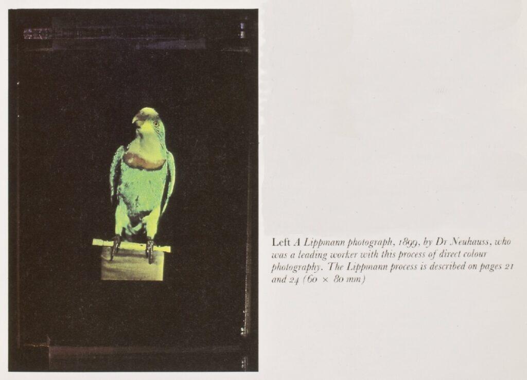 color photograph taken by lippman