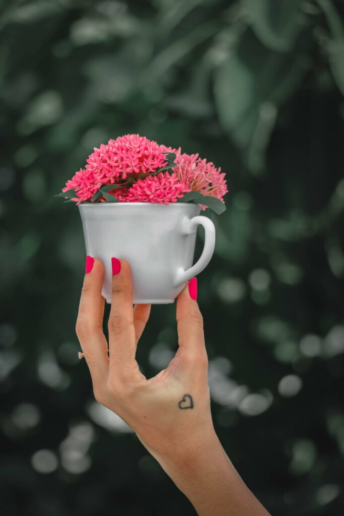 color photography of a cup full of pink flowers