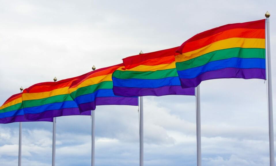 rainbow flags