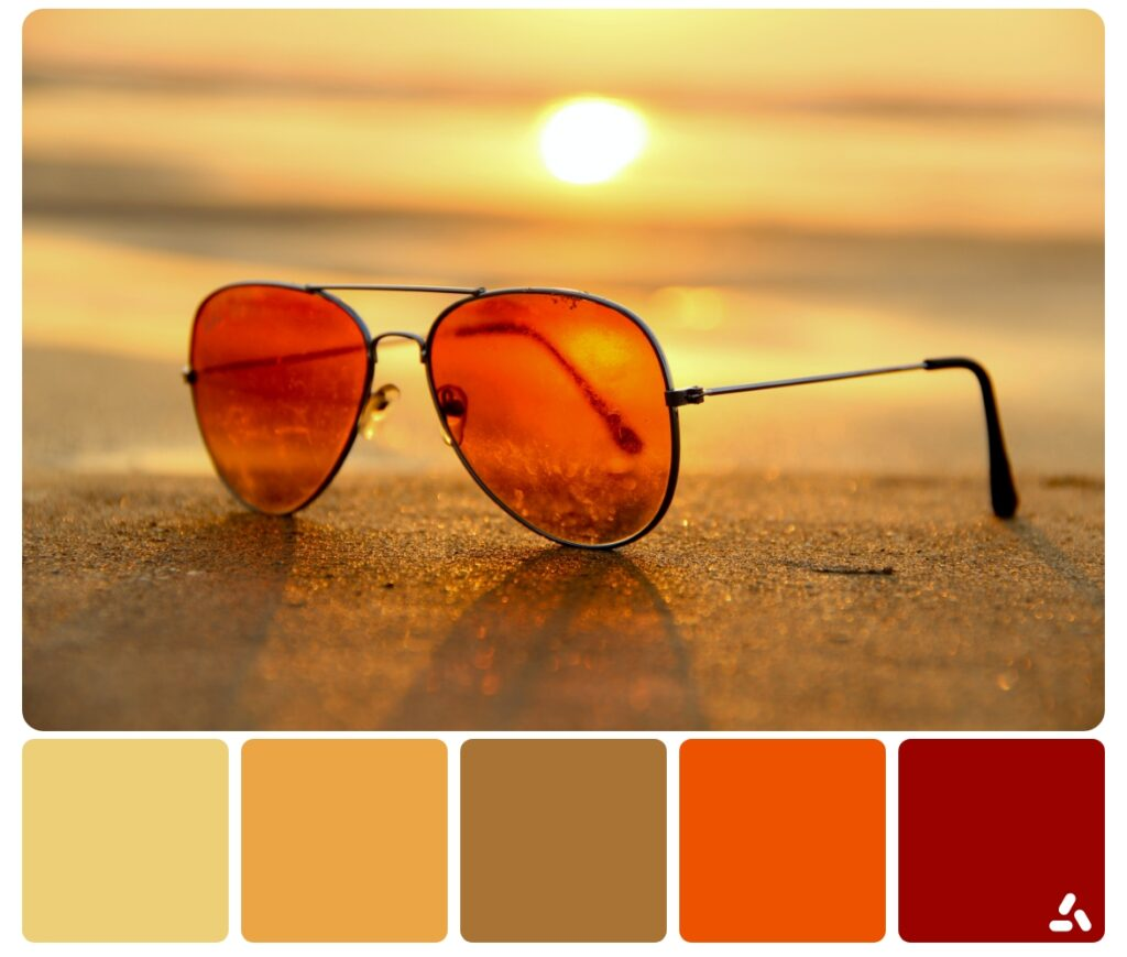 a sunglasses