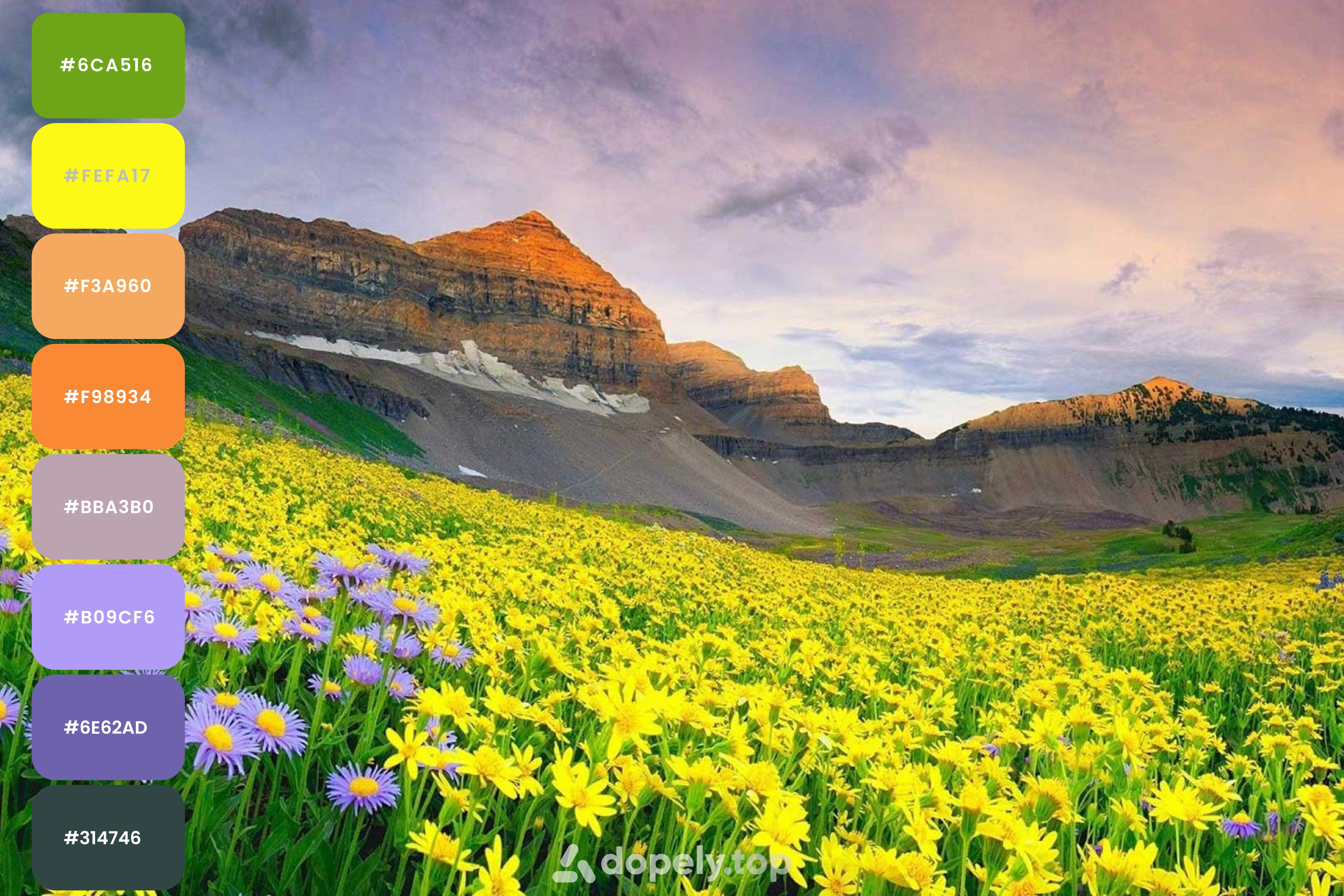 Flower Valley of Uttrakhand in India, color palette by Dopely