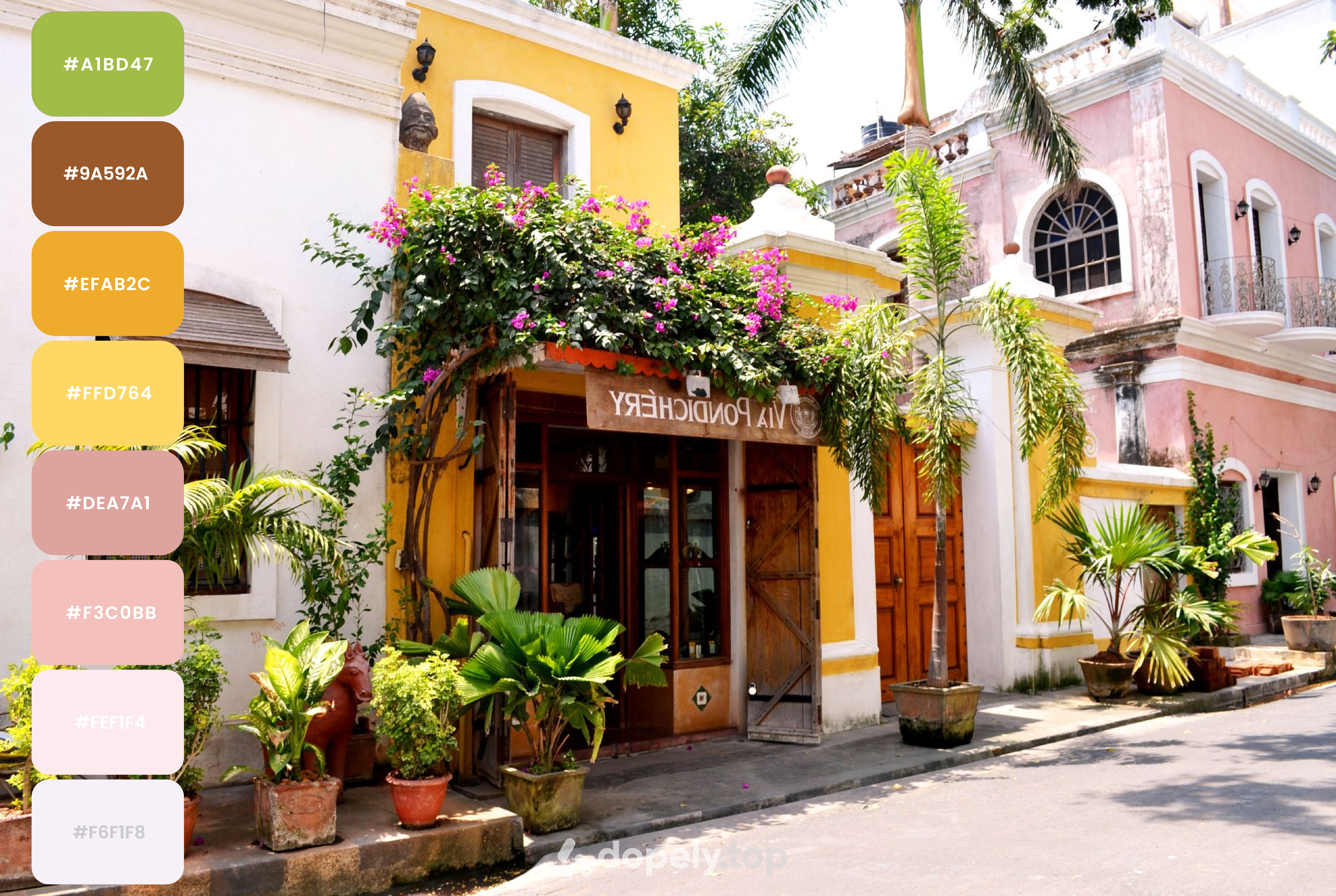 Pondicherry one of the most colorful cities in India, color palette by Dopely