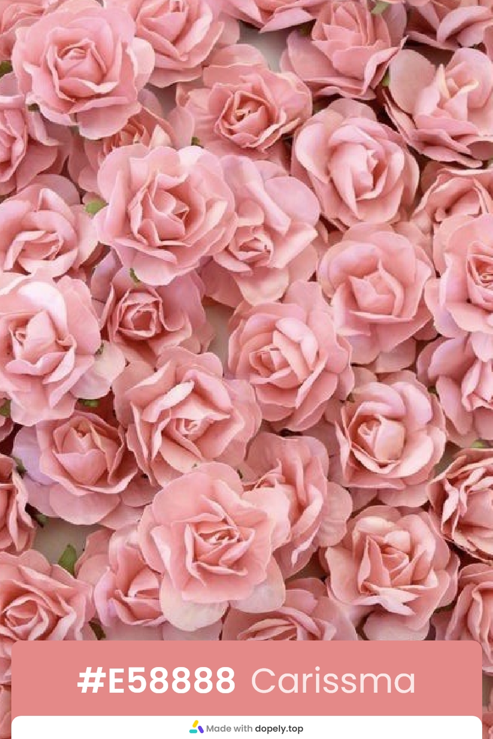 carissma color rose flower meaning with hex code