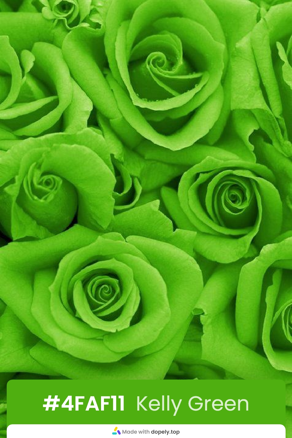 green color rose flower meaning with hex code