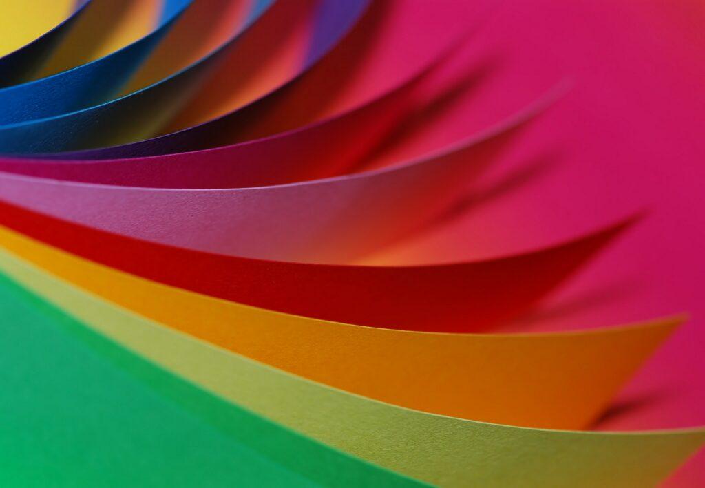multicolored photo