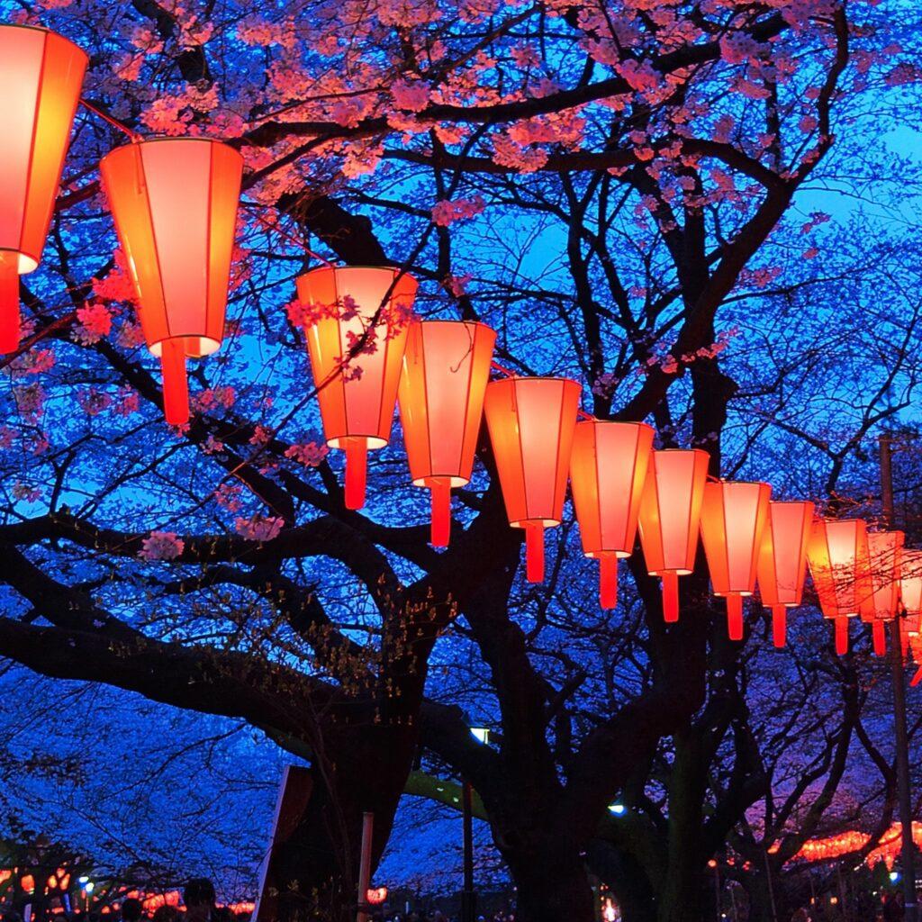 Hanami Color Festival