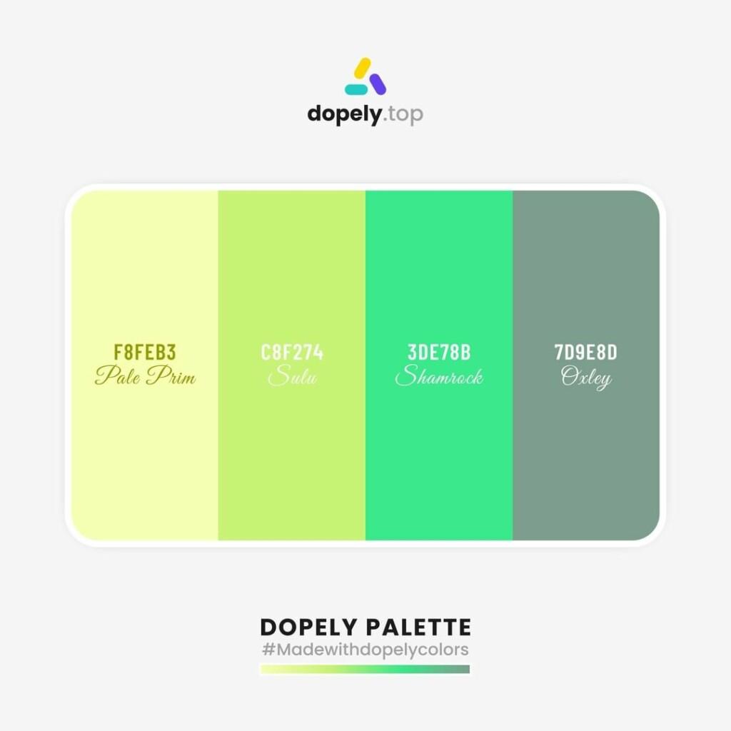 color scheme Canary (F8FEB3) + Mindaro (C8F274) + Shamrock (3DE78B) + Granny Smith (7D9E8D)