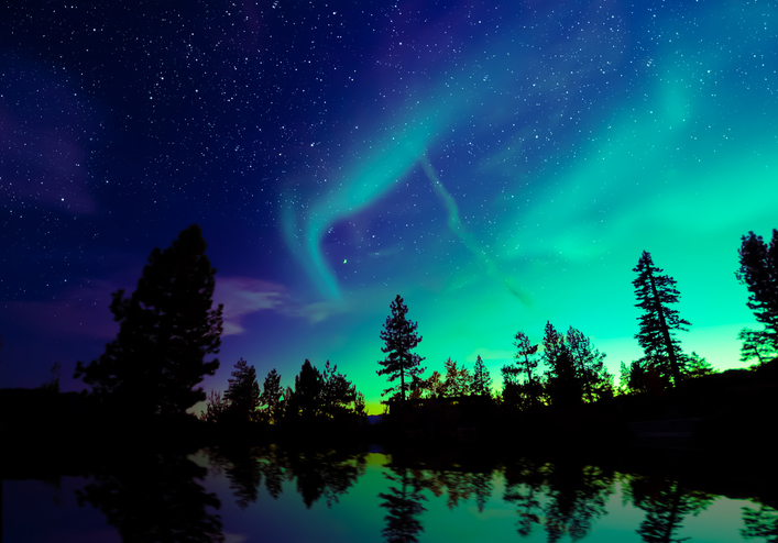aurora borealis, northern lights, trees in darkness, featuring black in nature