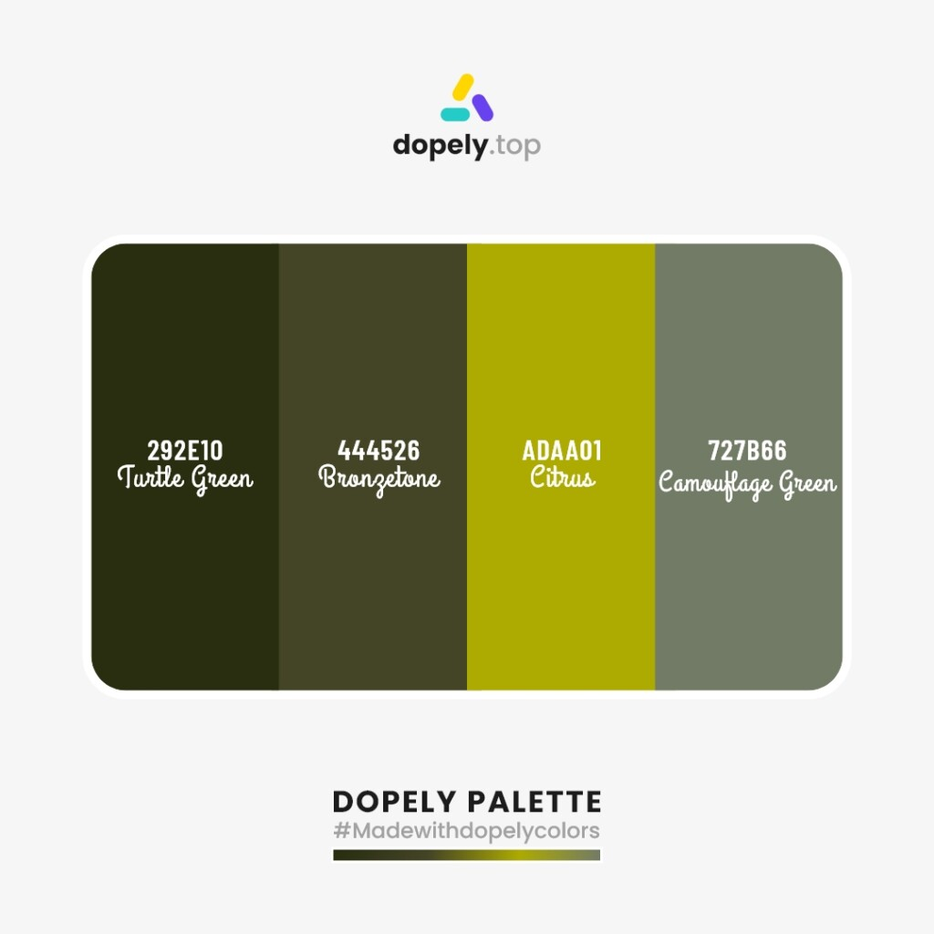 Color palette inspiration  from Dopely colors with: Turtle Green (292E10) + Brongetone (444526) + Citrus (ADAA01) + Camoulage Green (727B66)