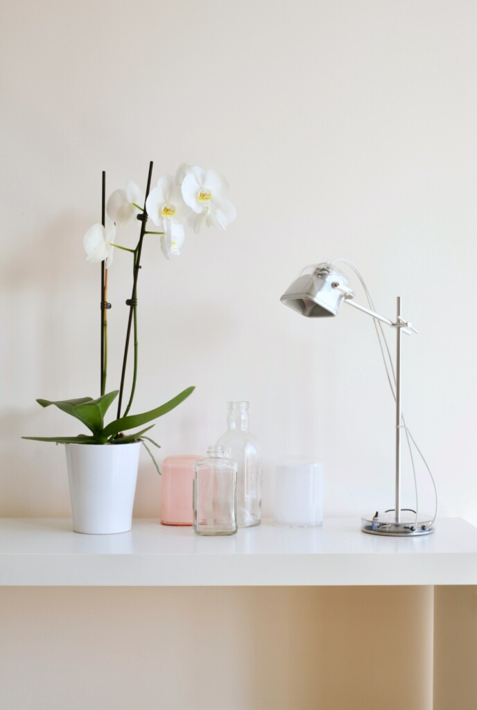 TWO WHITE ORCHID BRANCHES IN A WHITE VASE ON A WHITE TABLE NEXT TO A READING LAMP