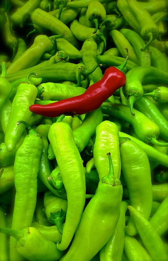 One red pepper among many green peppers, dominant and recessive colors