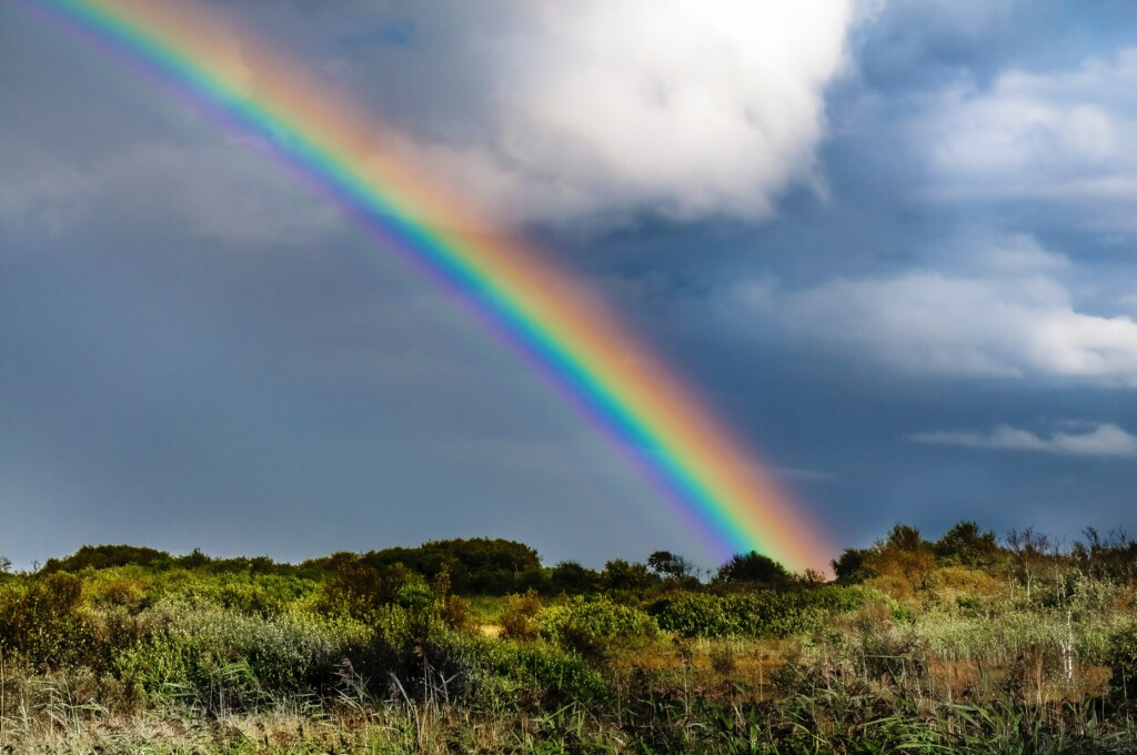 a rainbow in the sky on the top of a green plain