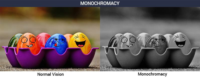 colorblindness deficiencies, monochromacy