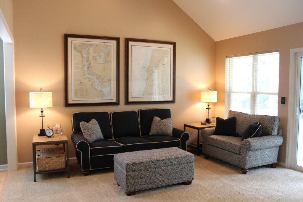 an image of a living room with accent-colored furniture