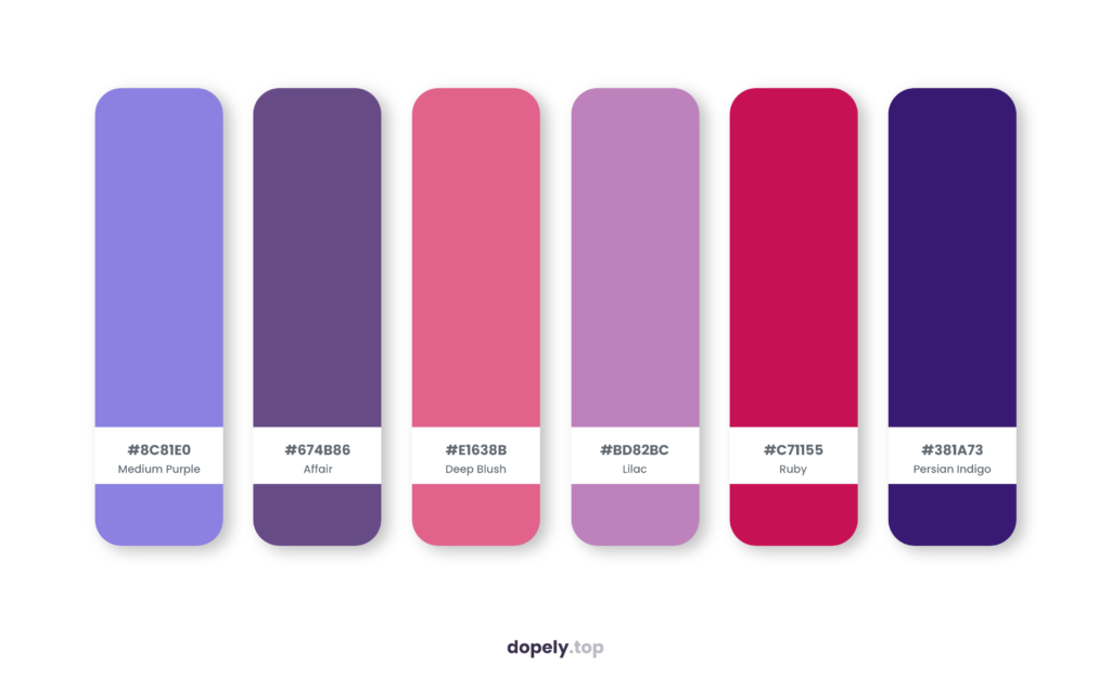 Color palette inspiration by Dopely color palette generator with: Medium Purple (8C81E0) + Affair (674B86) + Deep Blush (E1638B) + Lilac (BD82BC) + Ruby (C71155) + Persian Indigo (381A73)