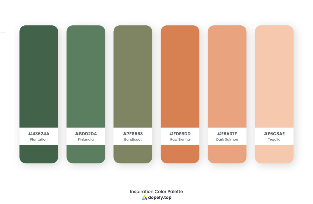 Color palette inspiration made by Dopely color palette generator with Plantation (43624A) + Finlandia (5C7E60) + Bandicoot (7F8563) + Raw Sienna (D78051) + Dark Salmon (E9A37F) + Tequila (F6C8AE)